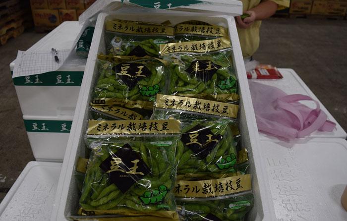 JA利根沼田 ミネラル栽培枝豆「豆王」試食宣伝会